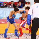 Чемпионат и Первенство России  по ПРБ-FCF-MMA 2014