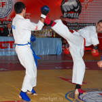 Amateur personally-team championship of Eurasia of full-contact fighting among adults.