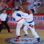 Любительский Международный мастерский турнир по ПРБ - MMA  среди взрослых (19 лет и старше).