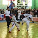Всероссийский турнир по ПРБ-FCF-ММА среди младших юношей, юношей и юниоров