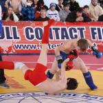 Всероссийский отборочный турнир по ПРБ-FCF-MMA 2015 г.