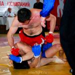 Профессиональный турнир по полноконтактному рукопашному бою.