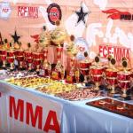 "International Tournament \""Global Fight Zone\"" FCF-MMA 2017"