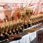 Фото Чемпионата и Первенства Азии ПРБ FCF-MMA 2016