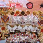 Фото Чемпионата и Первенства России ПРБ FCF-MMA 2016