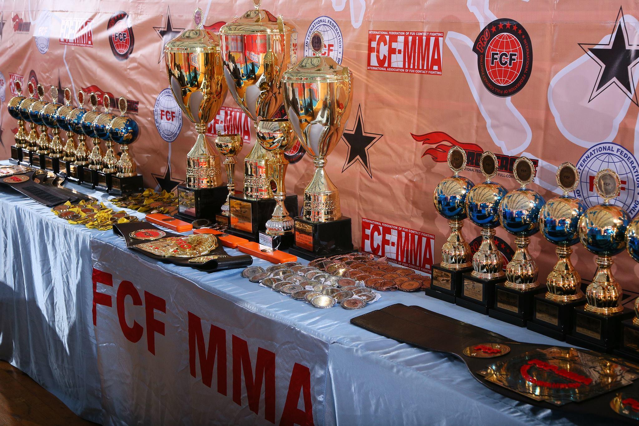 Отчет Чемпионат Мира ПРБ FCF-MMA 4-5 июня 2016г.