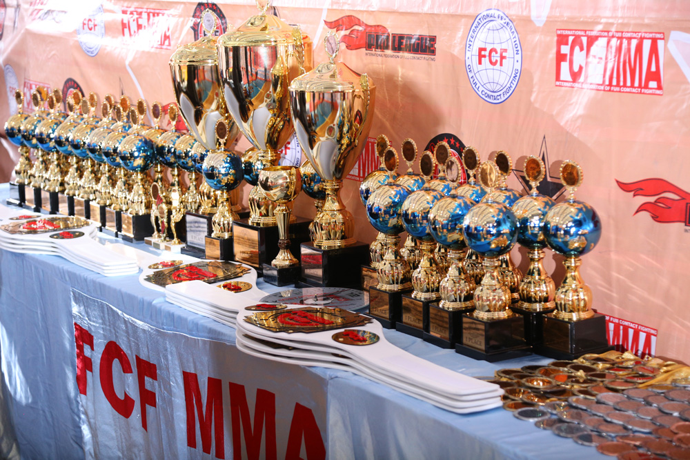 Report of the 7th World Championship of FCF-MMA 2017
