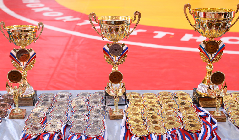 Report All-Russian Qualifying Tournament of FCF-MMA 2017