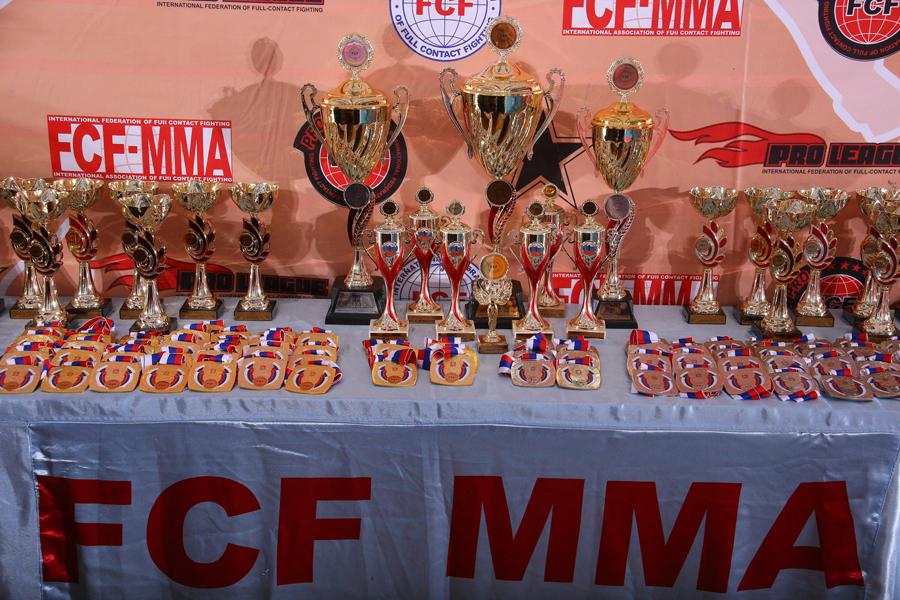 Отчет Чемпионат и Первенство России FCF-MMA 2017