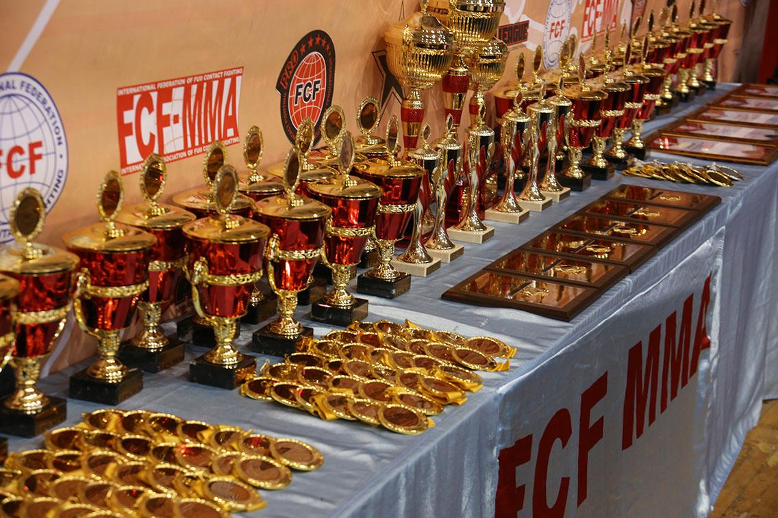 Отчет Международный Турнир «Global Fight Zone» FCF-MMA 2018