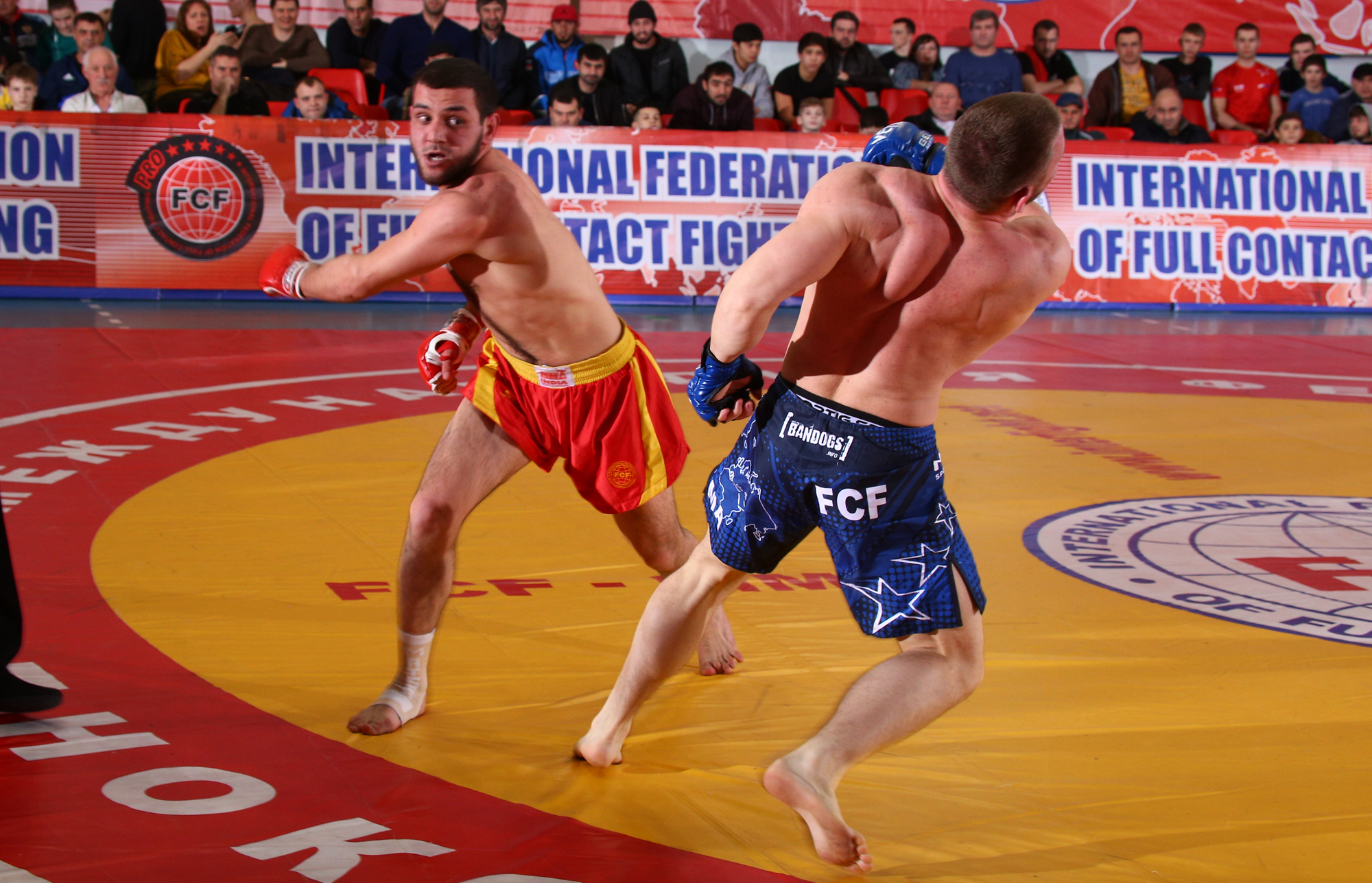 VIDEO International Tournament «Global Fight Zone» FCF-MMA 2019