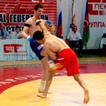 Полноконтактный рукопашный бой. Профессиональный турнир.