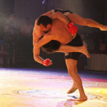 CIS Championship among professionals and CIS Cup among amateurs in FCF-MMA 2011