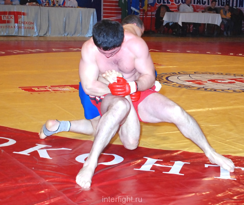 004_pro_fighting