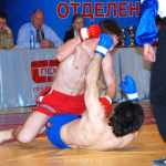 006_pro_fighting