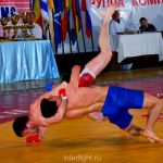 Professional tournament on full-contact fighting