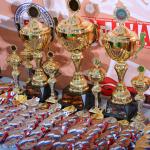 All-Russian Tournament FCF-MMA 2018