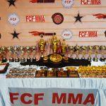 International Tournament «Global Fight Zone» FCF-MMA 2020
