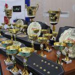 International Tournament «Global Fighting Zone» FCF 2021 / Международный Турнир «Global Fight Zone» по ПРБ FCF 2021